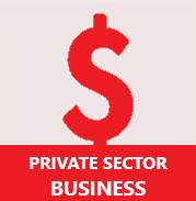 private sector business
